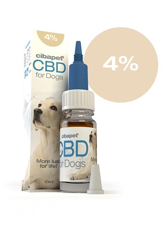 4% CBD-Öl für Hunde