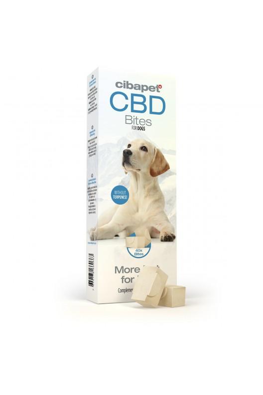 CBD bites for dogs